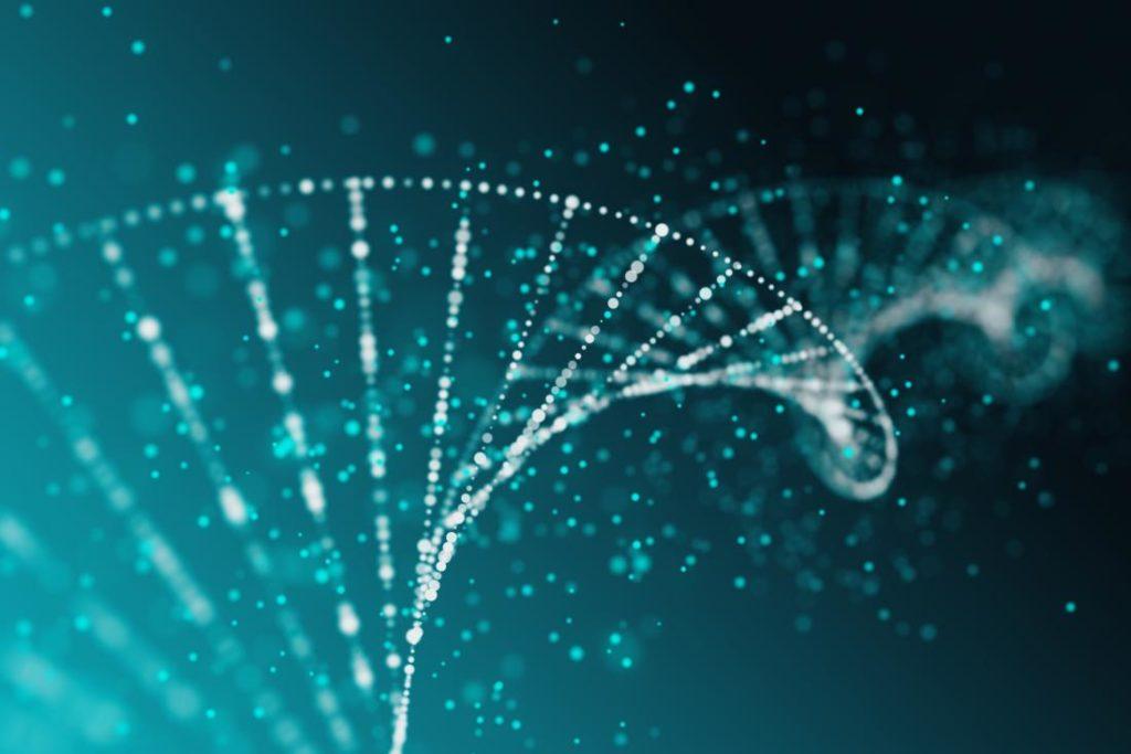 血統(DNA)