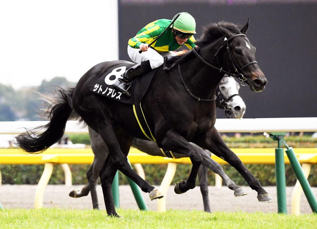 有力馬の一頭『サトノアレス』