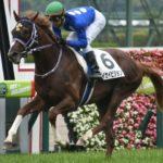 タイセイビジョン 血統評価|タートルボウル産駒の素質馬!