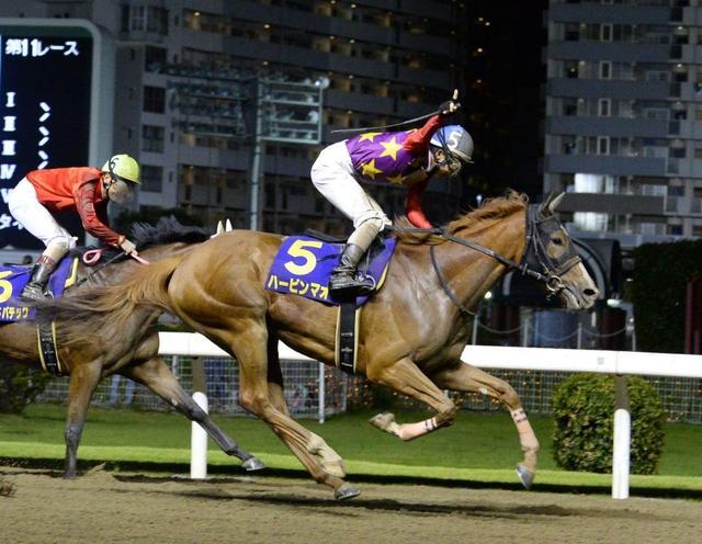 【関東オークス 2019 予想】血統データ分析|馬券はフレンチデピュティの血を持つ馬を狙え!