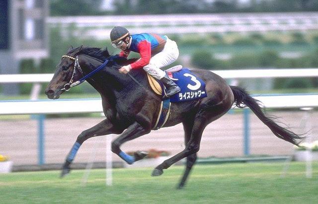 ロベルト系の活躍馬②「ライスシャワー」