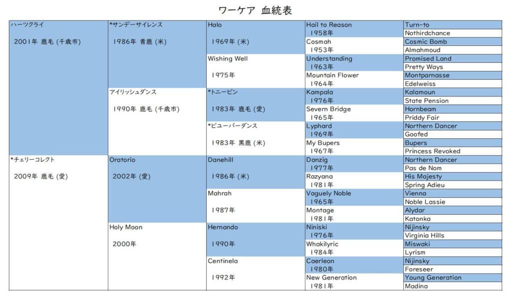 ワーケア 血統表